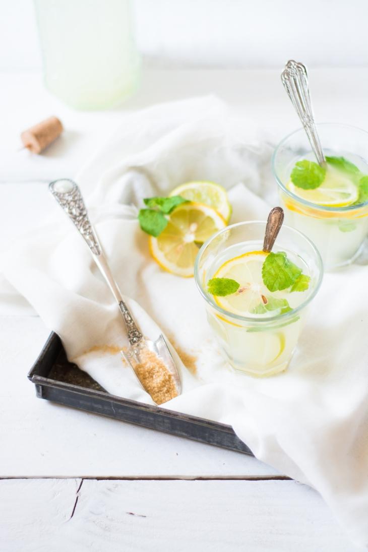Limonade rafraîchissante aux deux citrons et à la menthe